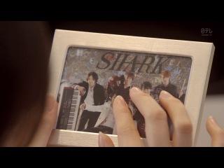 SHARK / Акула (Япония) 1 из 12
