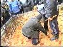 Собачьи бои чемпионка украине питбуль vs питбул