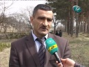 Quba meşələri daha 40 hektar artacaq