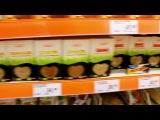 PlushevayaKsushaShow -  Зависимость! Это не про меня! [#4]  выпуск № 4 Плюшевая Ксюша XyisNimShow рекомендует - Коша. Юмор, прикол, смешное видео, няша, супер круто