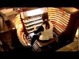 Flight of the Bumblebee-organ pedals-Carol Williams