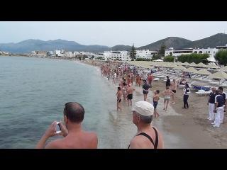 Акула на пляже острова Крит Греция