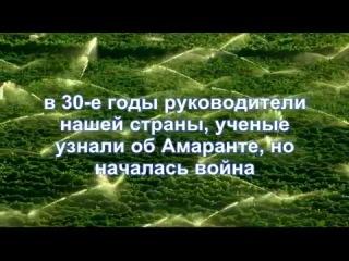 Правда о долголетии (Амарант)