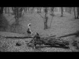 Одиночество бегуна на длинную дистанцию (1962)