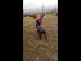 Есаул играет с ребенком)))Первое знакомство)))