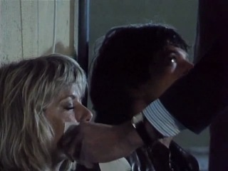 Dempsey and Makepeace (Armed and Extremely Dangerous)