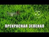 Прекрасная зелёная / La belle verte (1996) | DVDRip