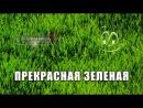 Прекрасная зелёная  La belle verte (1996) | DVDRip
