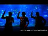 【アルスマグナ】シンガポールでおちん【ギガンティックO T N】 HD