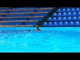 Синеглазые дельфины нас катали на спине )