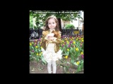 Луиза Габриэла Бровина (Надя Авдеева) под музыку Павлики International - Туловище Ну Ваще. Picrolla
