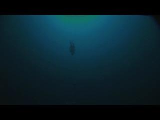 Мировой рекорд фридайвинг Уильям Трабридж. Без ласт и груза