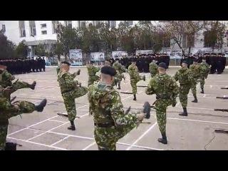 ДШБ 810 ОбрМП День Морской пехоты Севастополь