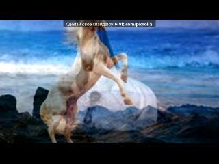 «лошадки» под музыку Детские песни - Песенка Про Лошадей. Picrolla