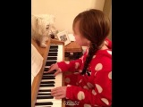 Jamming on the piano singing to minty boy ❤ - ConnieTalbot