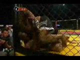Herb Dean the Ultimate MMA Referee 2