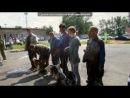 «собаки» под музыку Король Лев 1 - Хакуна Матата.