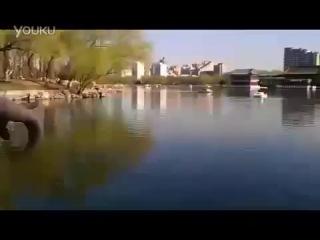 Гигантский- крокодил съел девушку