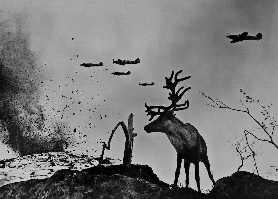 олень Яша на війні