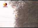 В Ельце продолжается замена ламп уличного освещения