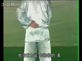 Zhu Dapeng taiji jibengong jiusong shiyao yi xuling