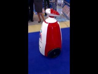 Робот AVANGARD - беседа