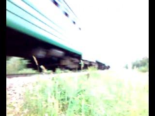 Наши приключения в Бежице Электрича на Бордовичи