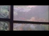 Шара / Sharasojyu / Shara (Наоми Кавасэ / Naomi Kawase) [2003 г., Драма, DVDRip]