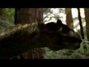 Затерянный мир (The Lost World 2001)