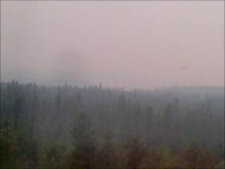 вид из моего окна: самолет тушит пожар