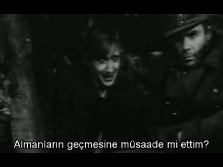 Proverka na dorogakh_alt_1