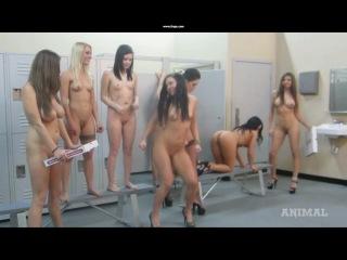 Порно гарлем шейк видео