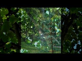 «ещё немного фото о Петергофе))» под музыку Музыка для души... [vkhp.net] - Мелодия полная приятных, захватывающих эмоций.....)))))))))). Picrolla