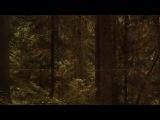 Helen Grimaud Mozart Adagio aus Klavir Koncerto №23
