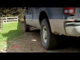 Приключение на ранчо «Гора гризли» / Horse Crazy 2: The Legend of Grizzly Mountain (2010) SATRip