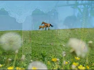 гр. Любэ и С. Безруков - Березы ( монтаж клипа мой)