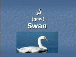 ▶ Pashto- Animals Part 4
