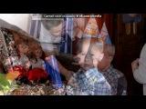 «Максимке 2 годика» под музыку Песня крокодила Гены и Чебурашки - С днем рождения. Picrolla