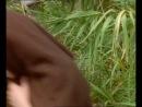 Чародей: Страна Великого Дракона / Spellbinder: Land of the Dragon Lord / Серия 21 (26) (Noel Price) [1997, Фантастика, Приключения, DVD-Remux] MVO НОТА Original