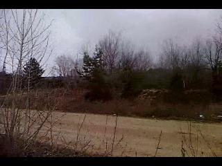 Лесок около озера в сердовине (около военной базы)