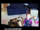 Смешное видеоРеакция малыша на собаку!