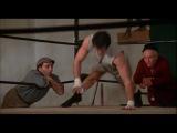 Тренировка Рокки 1 / Training Rocky 1