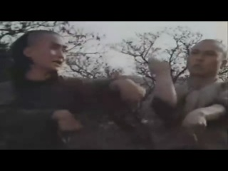 Змея Кулак буддийского Дракона / Snake Fist of a Buddhist Dragon (1981)