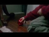 Трейлер к фильму Один дома (Клипы по фильмам)