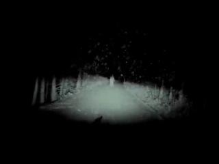 японский видеорегистратор, заснял на дороге голую девочку