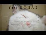Смешные фотки под музыку Детские песни - Про кота)))убилоDDDDDDDDD. Picrolla