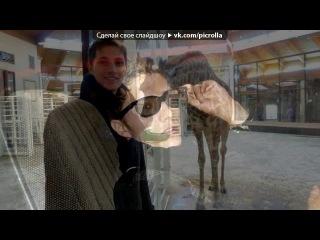 «  Me Архив» под музыку Shwayze - Get U Home (OST Пираньи 3D). Picrolla
