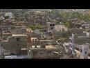 В дебрях Индии Wildest India 2011 1 серия