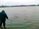 Как Саша Зинченко тащил рыбу-коропа, а Юра (Беля) ловил его в подсаку )