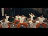 Цайлифо / Cai Li Fo / Choy Lee Fut (2011) HDRip [vk.com/FilmDay]
